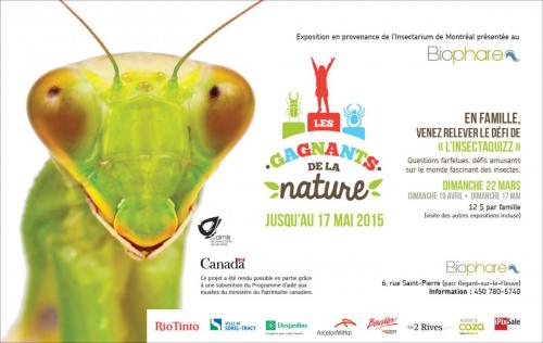 Nouvelle | Biophare Insectaquiz | Agence caza